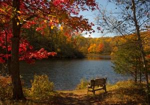 fall health